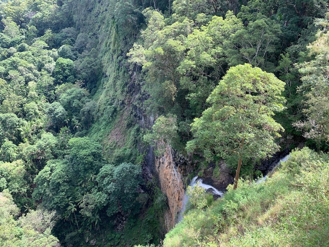 valley-views ... photo