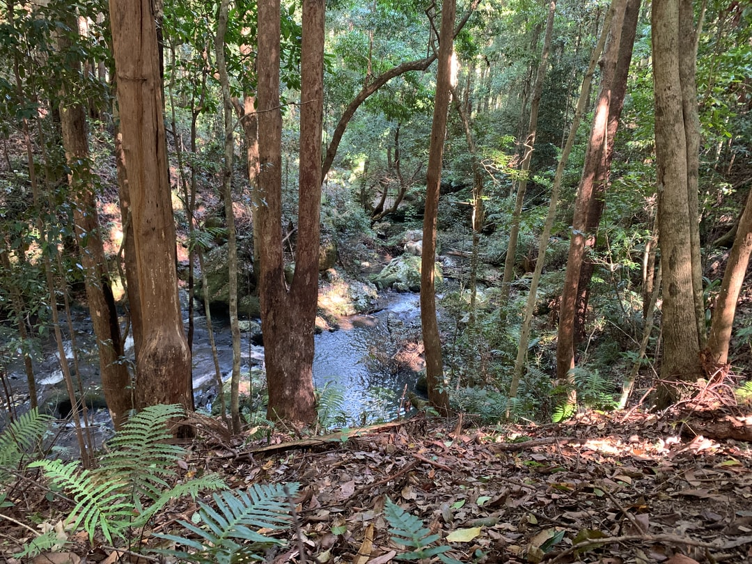 stream-winding-through ... photo