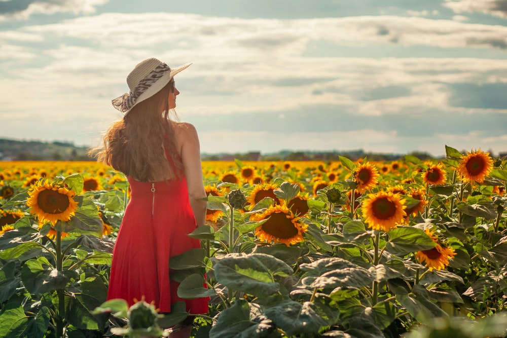 woman in red dress standing on sunflower field during daytime