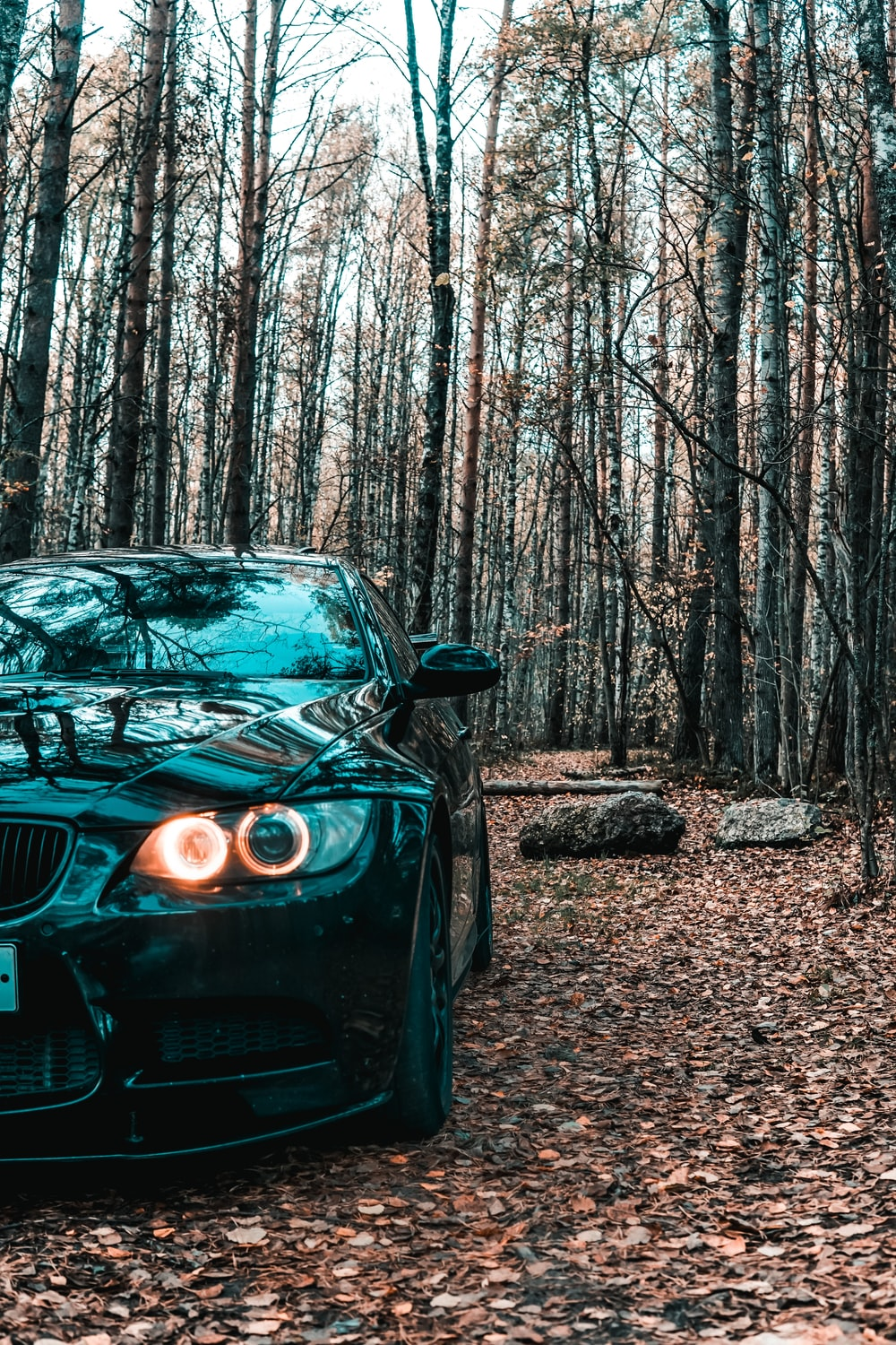 black bmw m 3 parked in the woods