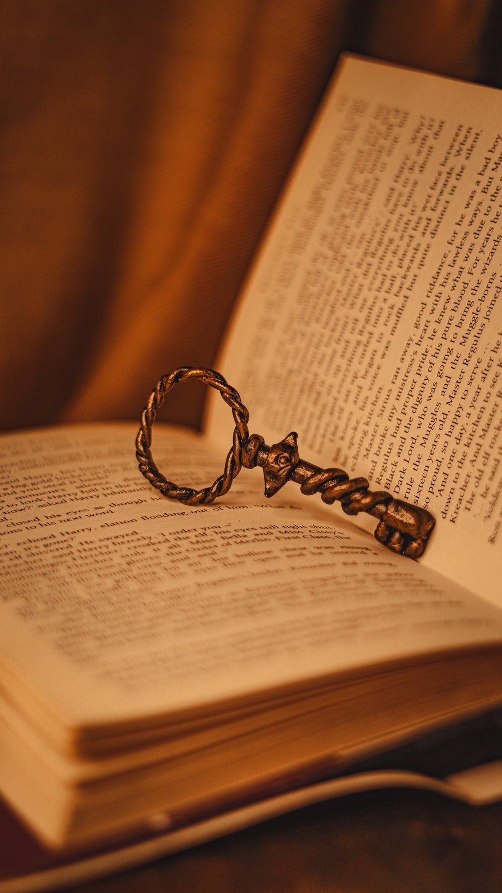 silver ring on book page