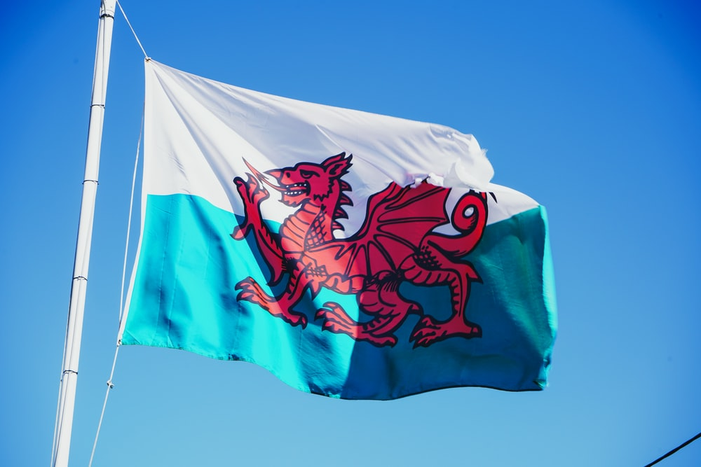 red and white flag with dragon