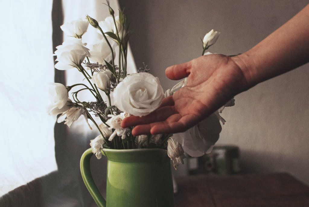 person holding white and red flower