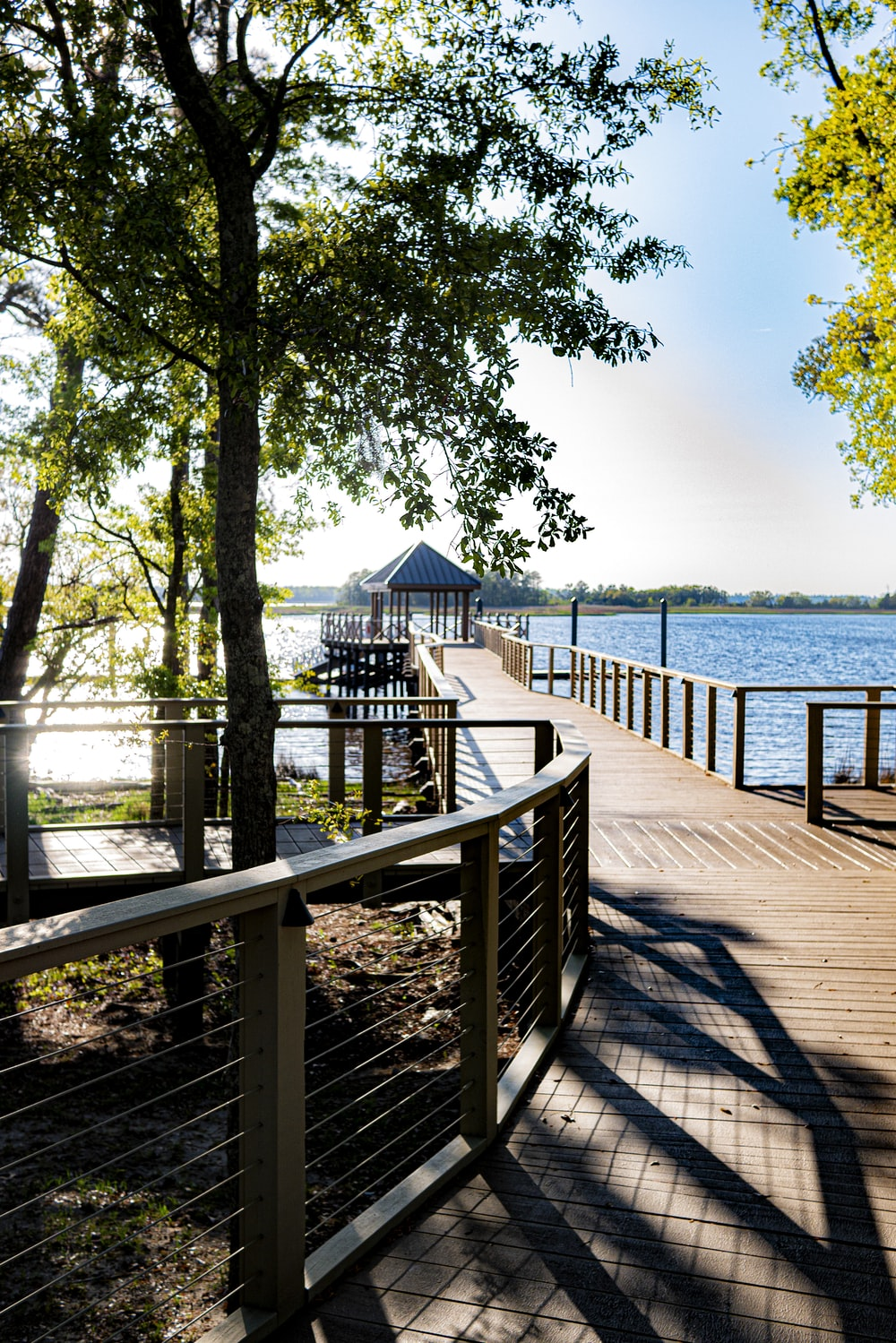 brown wooden dock near body of water during daytime