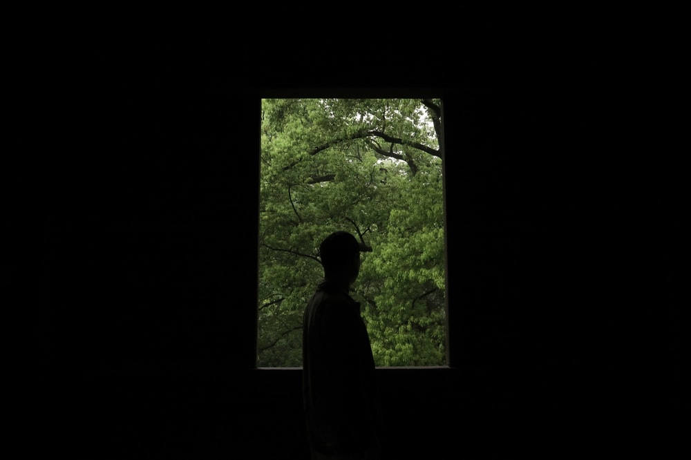 silhouette of person standing near green trees during daytime