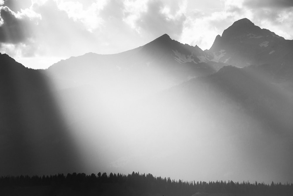 silhouette of trees and mountains during daytime