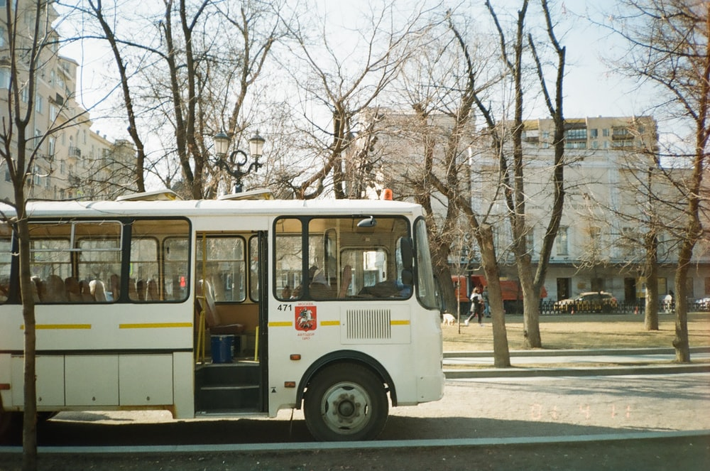 white and red bus on road during daytime