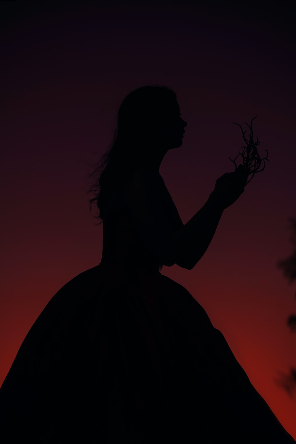 silhouette of woman holding flower
