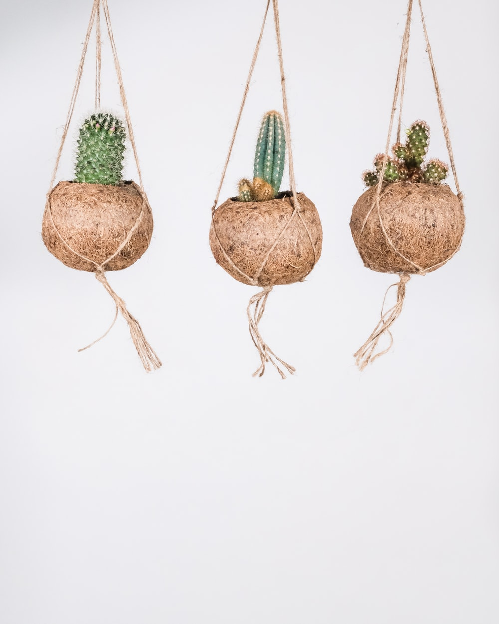 brown and green hanging decor