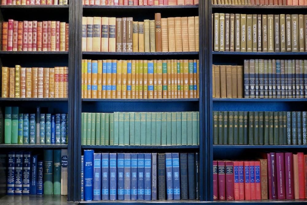 books on shelves in room