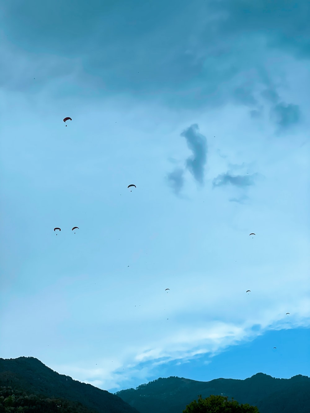 silhouette of birds flying under cloudy sky during daytime