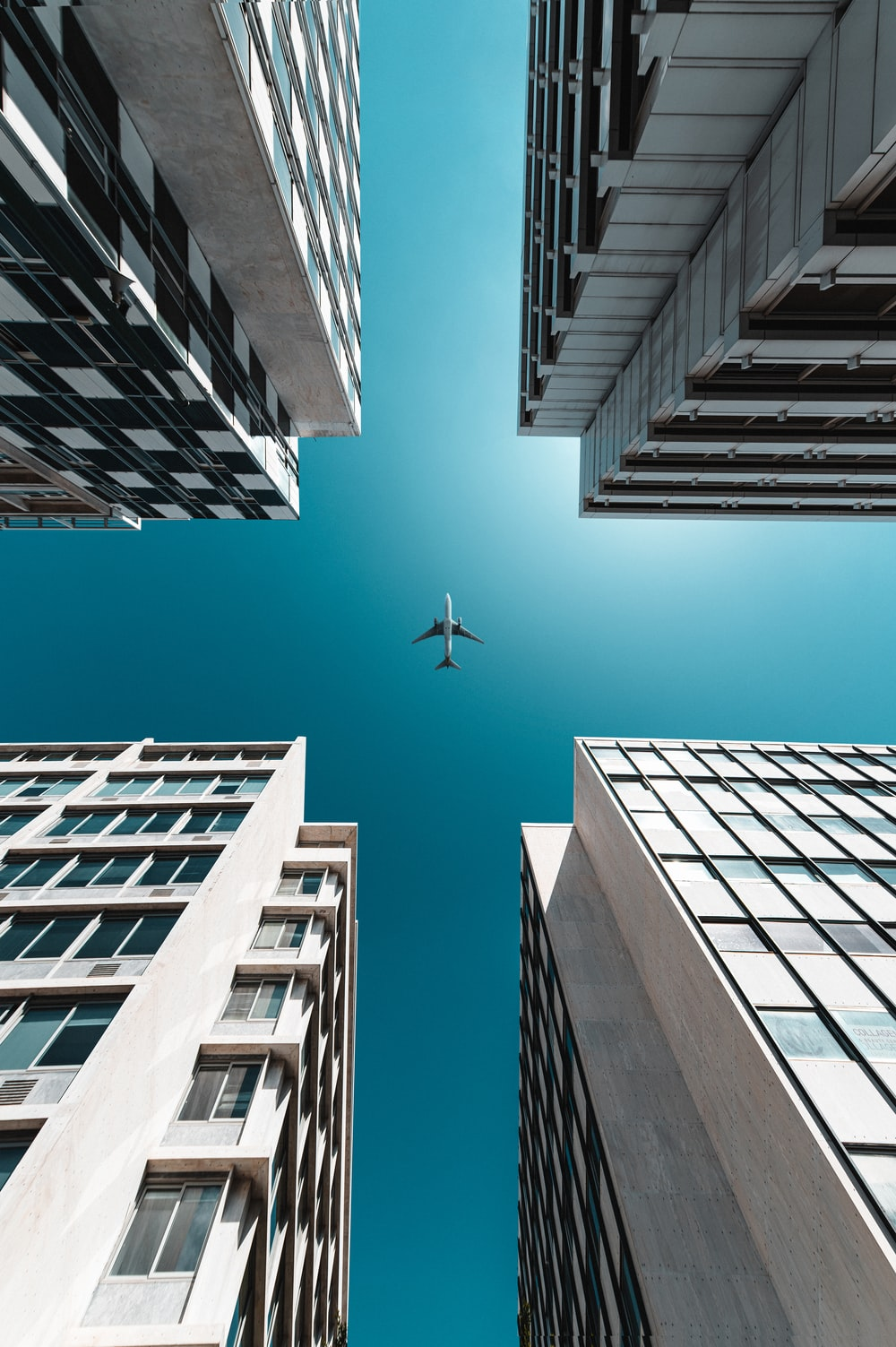 white bird flying over the building during daytime