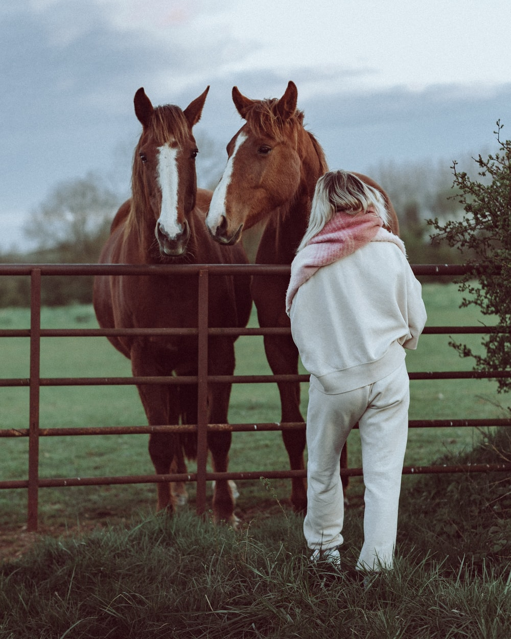 woman in white jacket standing beside brown and white horse during daytime