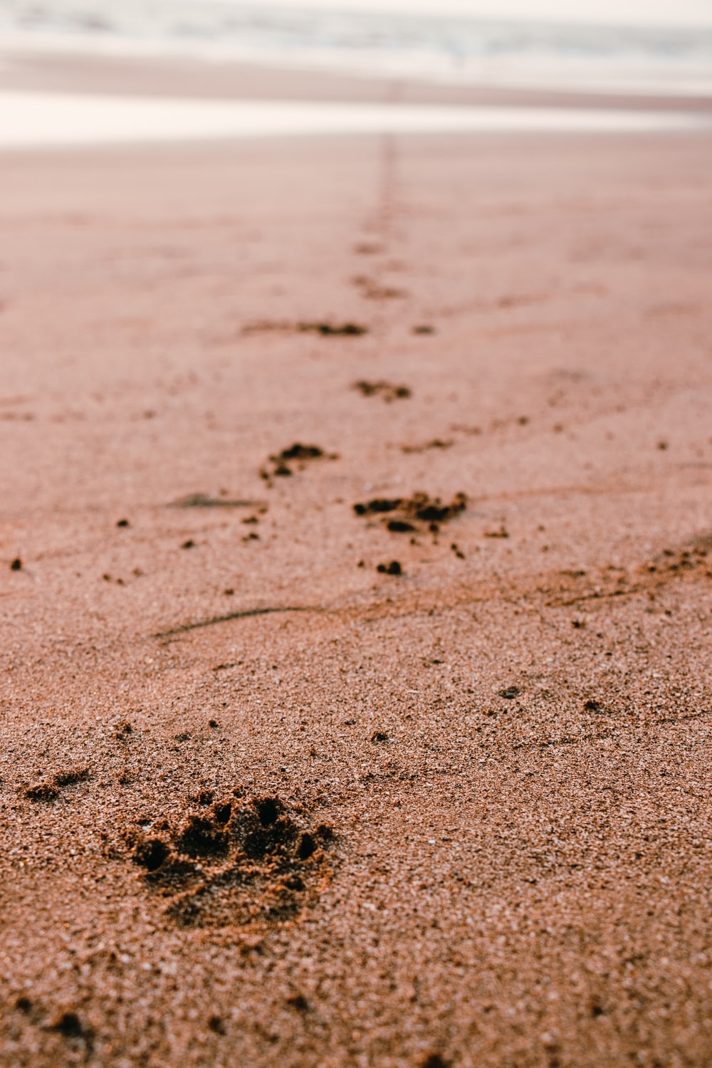 brown sand with footprints during daytime