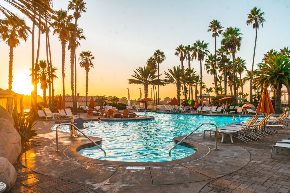 swimming pool surrounded by palm trees during daytime
