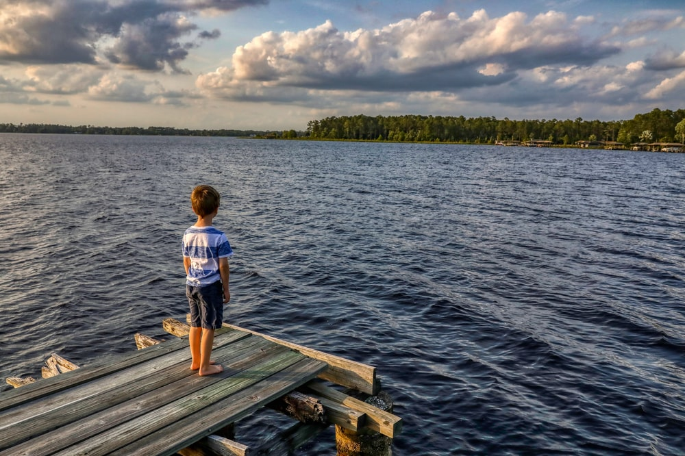 boy in white t-shirt standing on wooden dock during daytime