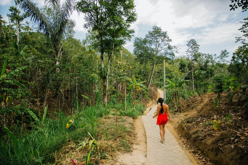 woman in red dress walking on pathway between green grass and trees during daytime