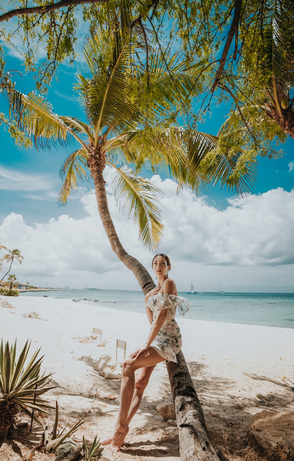 woman in white dress sitting on palm tree on beach during daytime