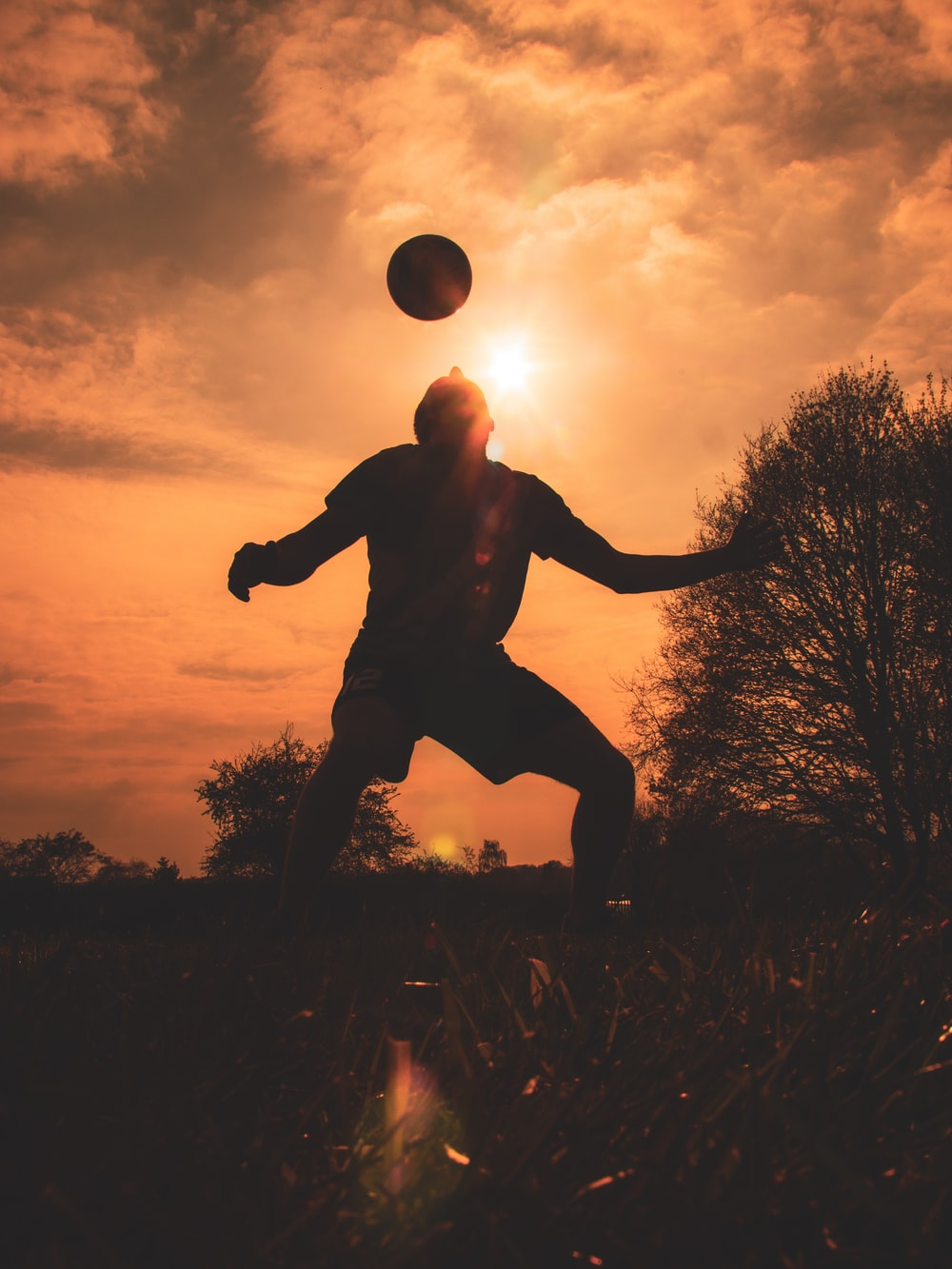 silhouette of man jumping on grass field during sunset