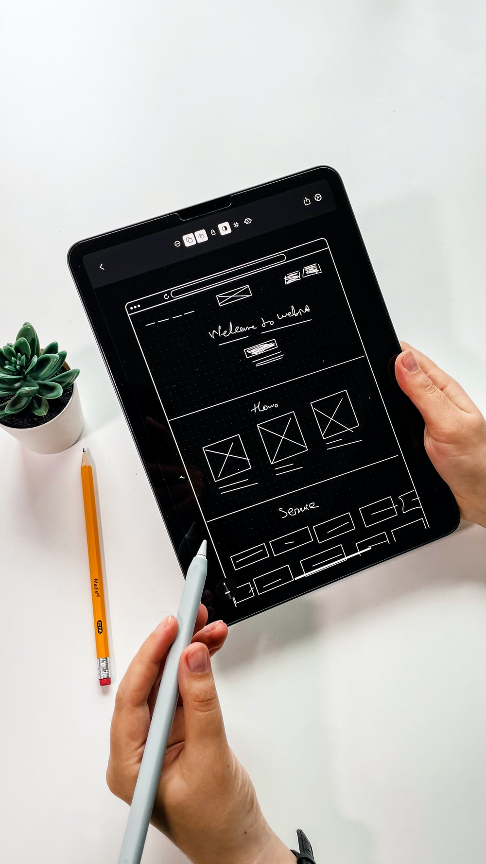 person holding black ipad with green plant