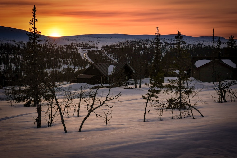 snow covered house near trees during sunset