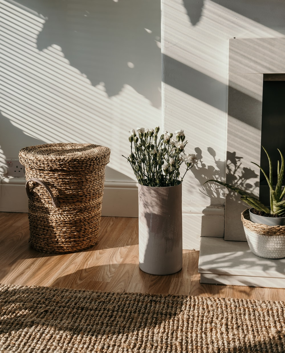 green plant in white ceramic vase
