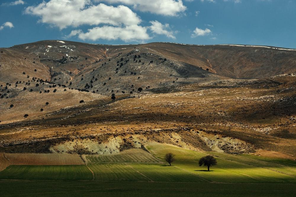 green grass field near brown mountains under blue sky during daytime