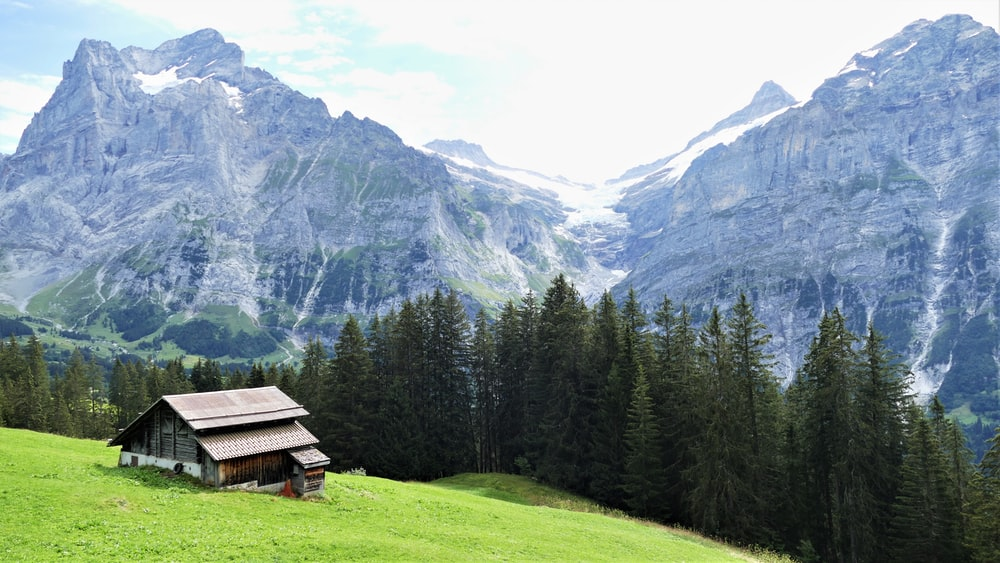 brown wooden house on green grass field near green trees and mountain during daytime