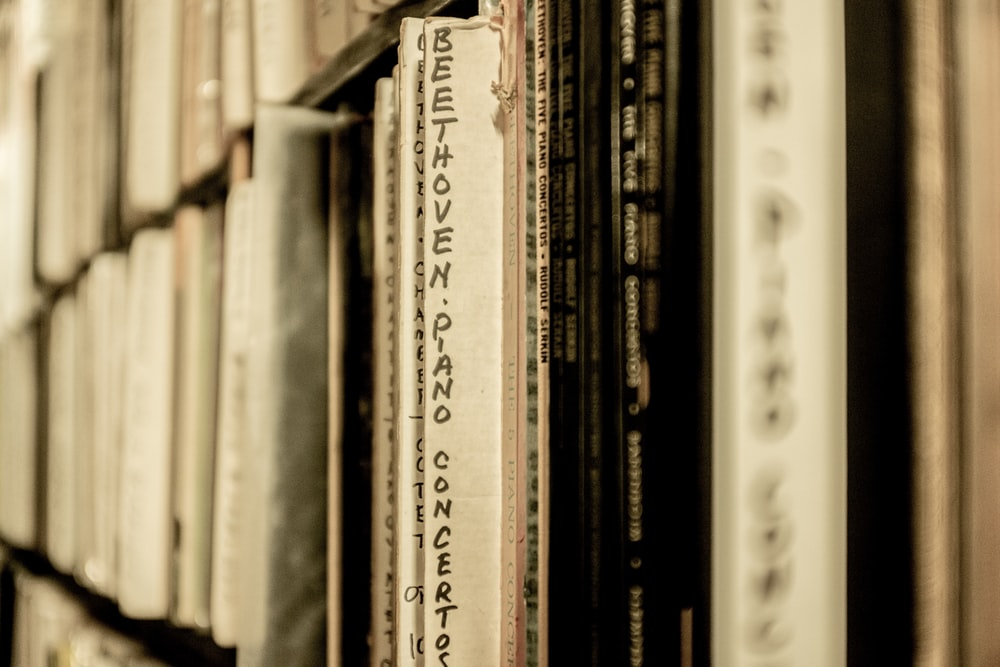 grayscale photography of books on shelf