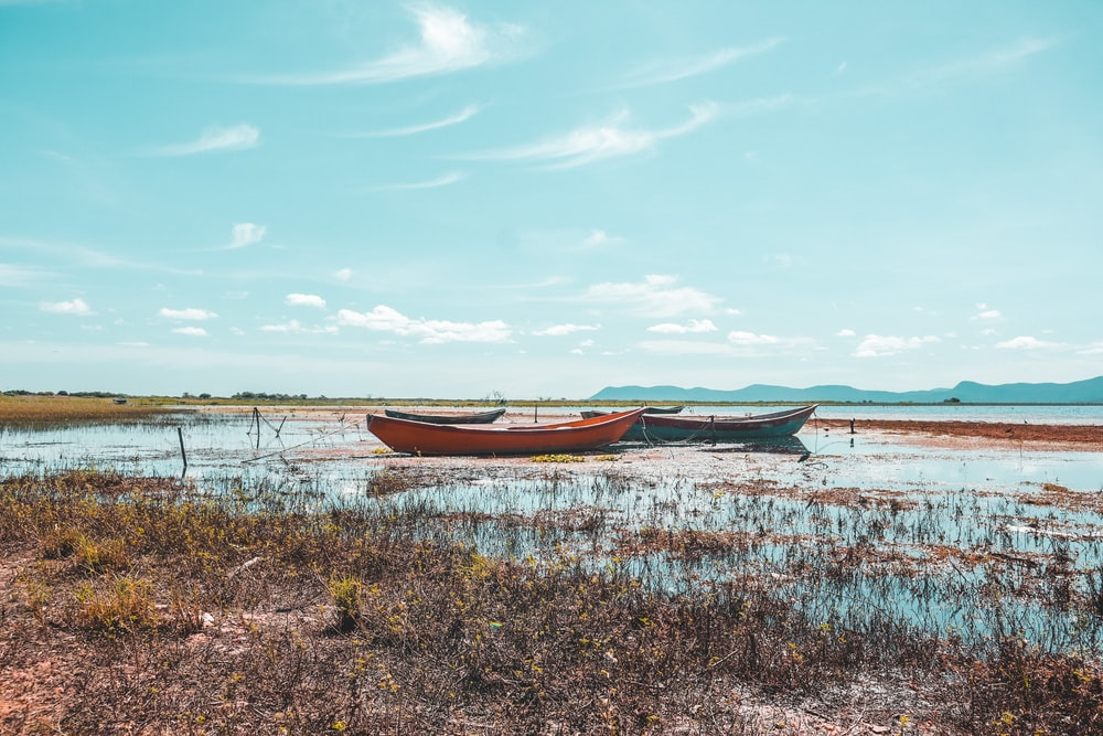 brown boat on green grass field near body of water during daytime