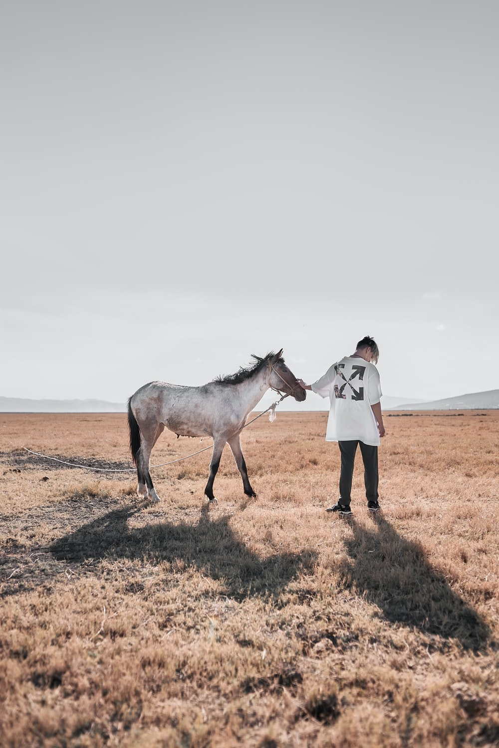 woman in white long sleeve shirt and brown pants standing beside white horse during daytime
