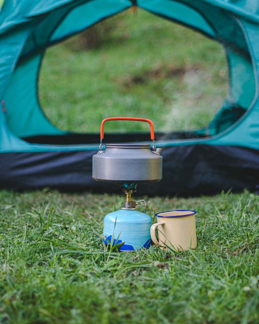 white and blue ceramic mug on green grass field