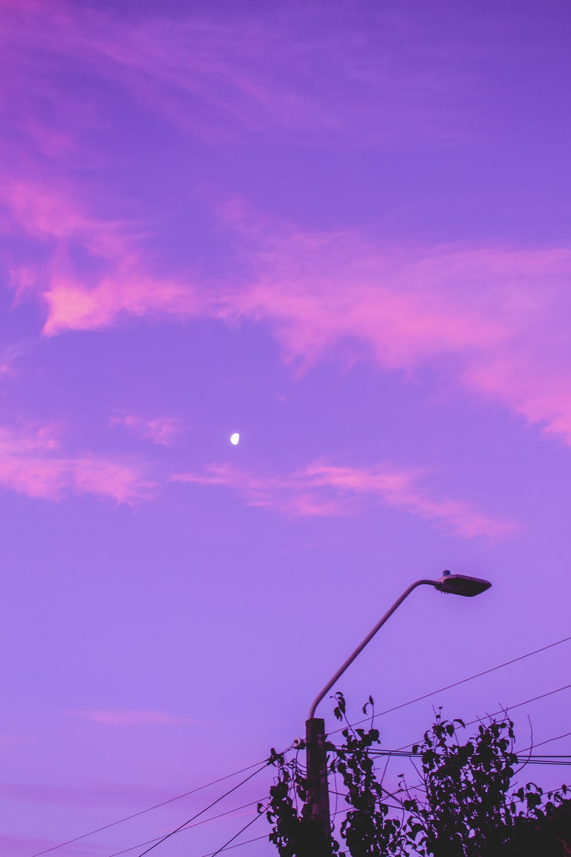 black street light under purple sky