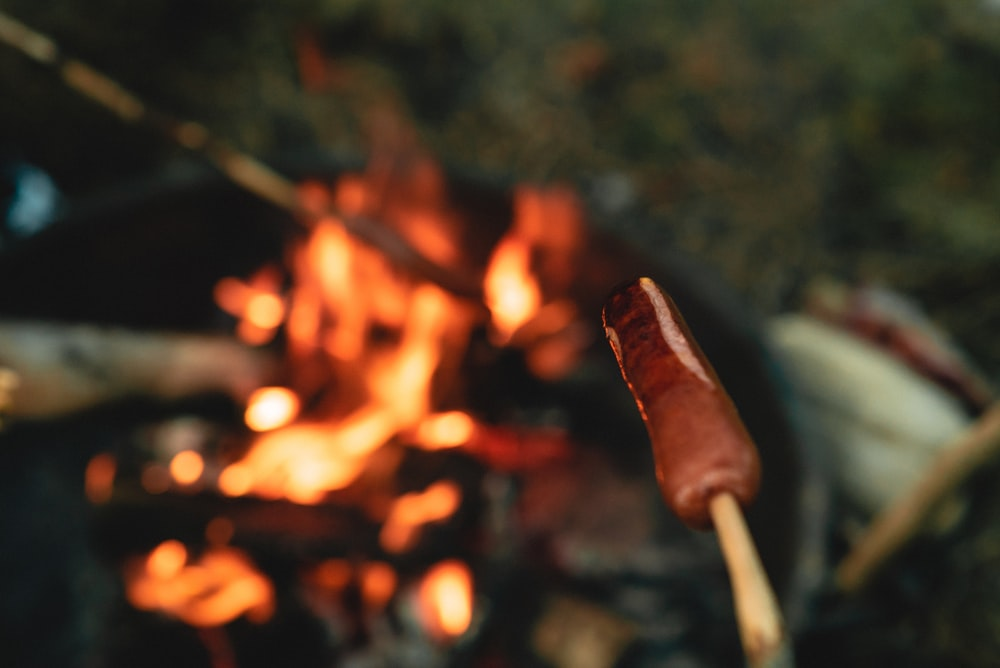 person holding stick with fire