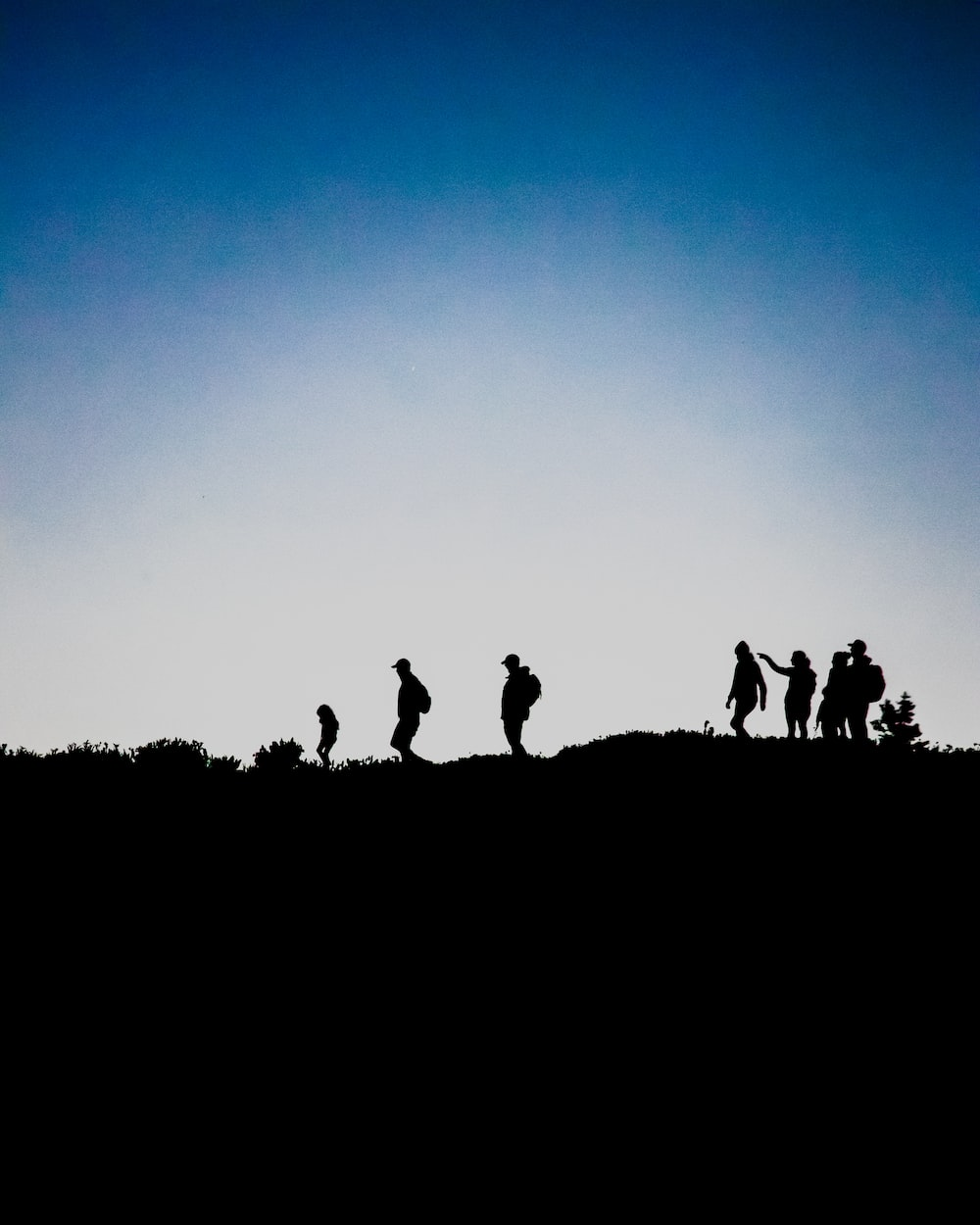 silhouette of people on top of hill during daytime