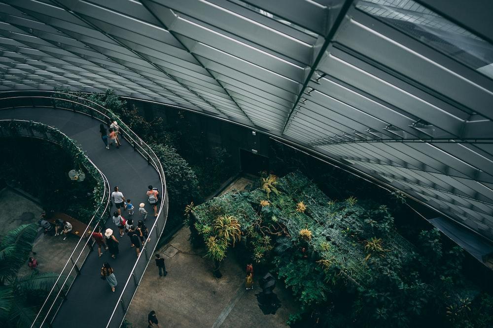 people walking on gray concrete road during daytime