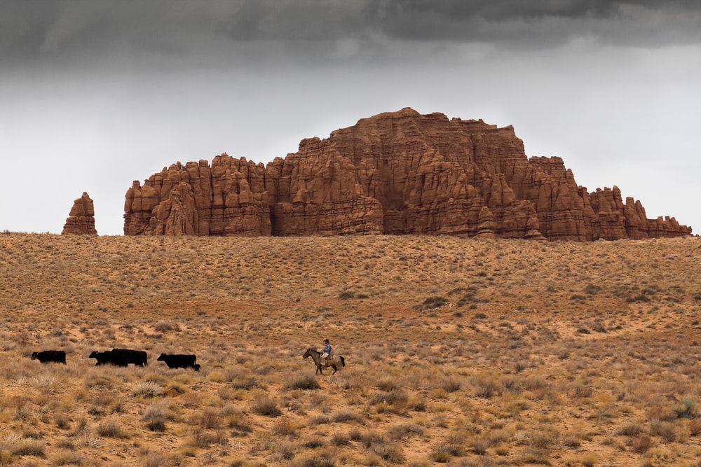 people on brown field near brown rock formation during daytime