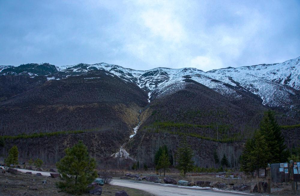 green trees near mountain under white sky during daytime