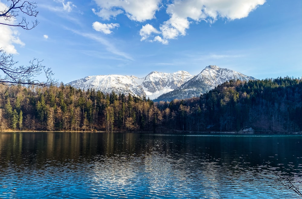 lake surrounded by trees and mountains under blue sky during daytime
