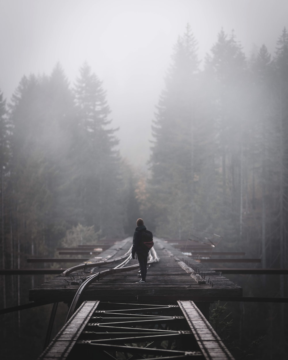 person walking on wooden bridge during foggy weather