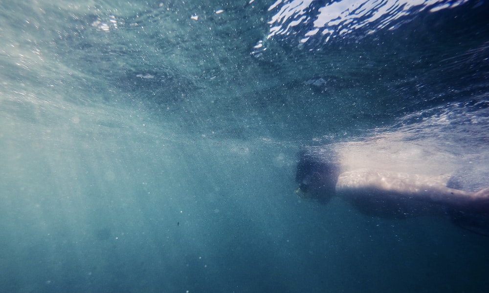 underwater photography of man swimming in the sea