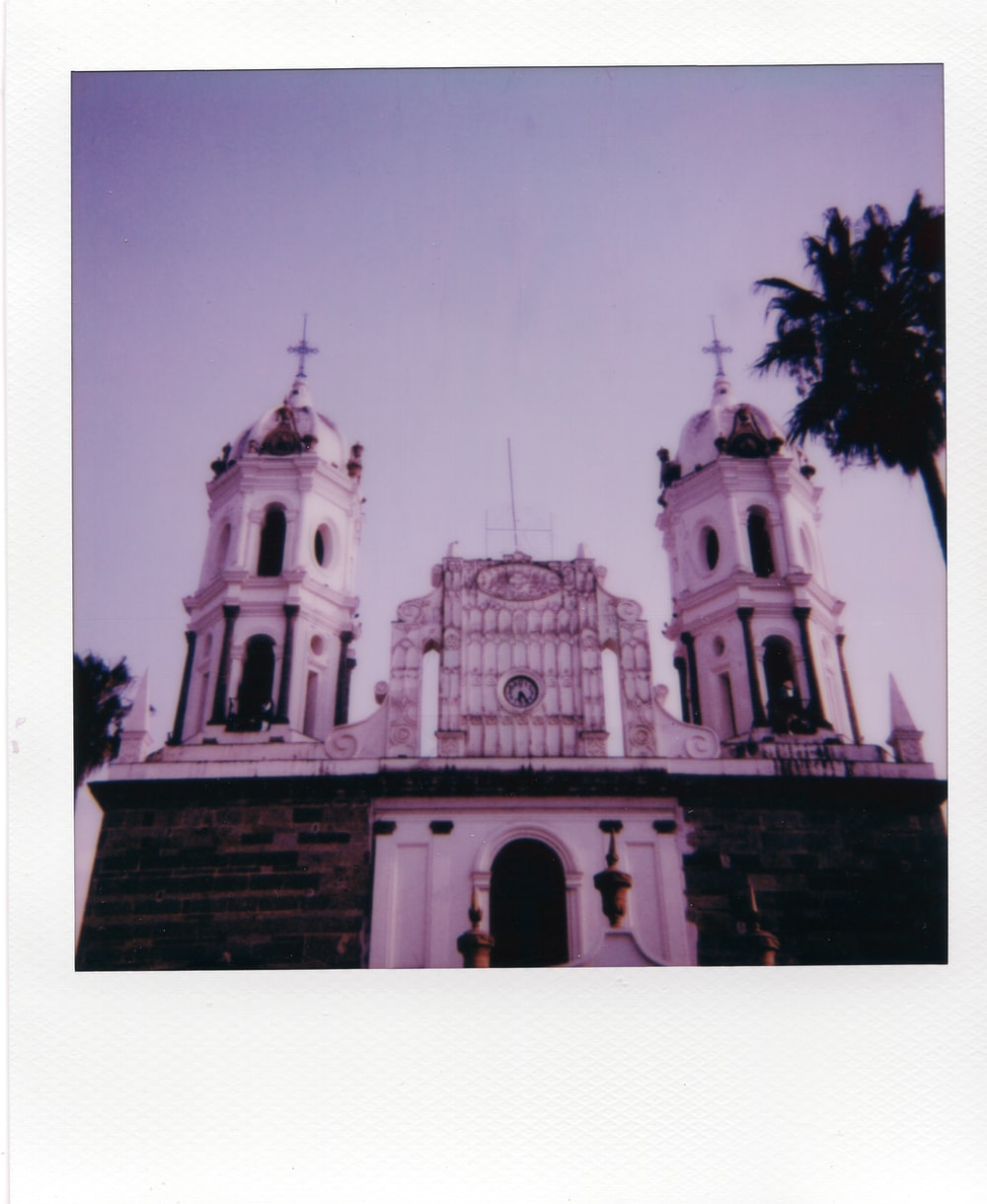 grayscale photo of cathedral near palm trees