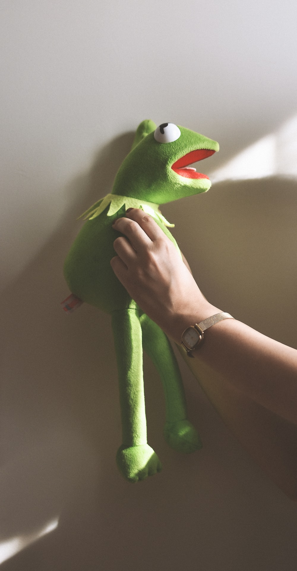 green frog plush toy on persons hand