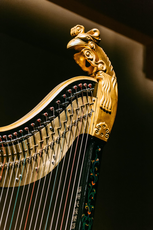 dela fazendo uma harpista