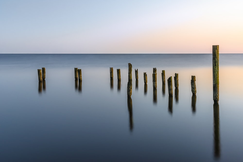 brown wooden sticks on sea during sunset