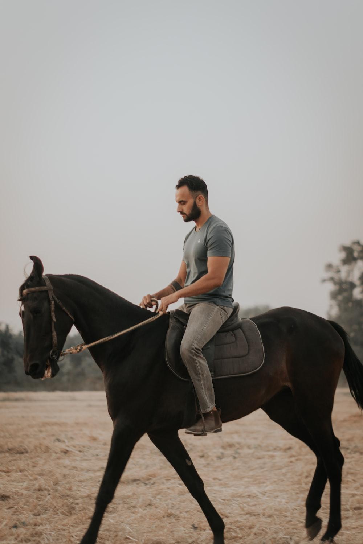 woman in white shirt riding black horse during daytime