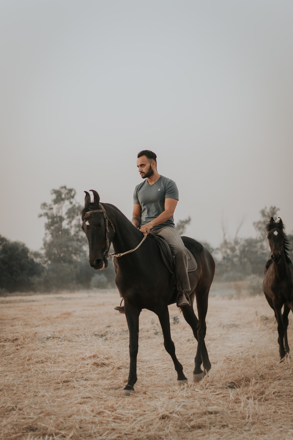 man in blue polo shirt riding brown horse during daytime