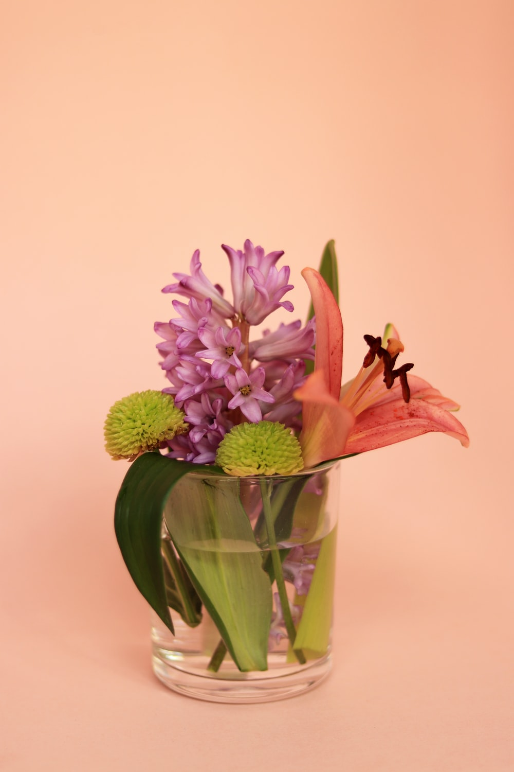 purple and white flower in clear glass vase