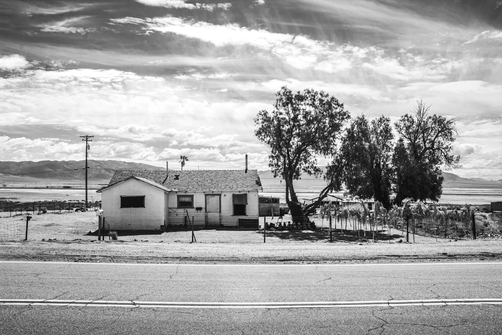 grayscale photo of houses near trees