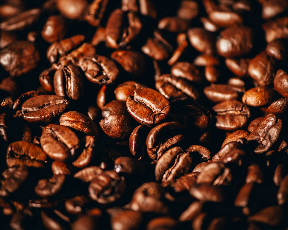 coffee beans in close up photography